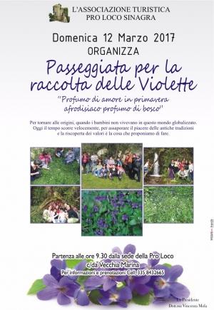 Sinagra – L'Associazione Turistica Pro Loco di Sinagra propone una passeggiata di gruppo tra i boschi per la raccolta delle violette, da effettuarsi durante la giornata del 12 marzo prossimo.