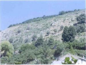 Dissesto idrogeologico: San Salvatore di Fitalia, in arrivo il progetto per contrada Scrisera