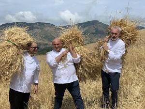 """L'impresa è riuscita. """"Diamo una mano al grano"""", l'iniziativa promossa dagli Ambasciatori del Gusto Arena, Freni e Caliri con l'apicoltore Giacomo Emanuele, ha dato nuovo impulso all'economia nebroidea."""